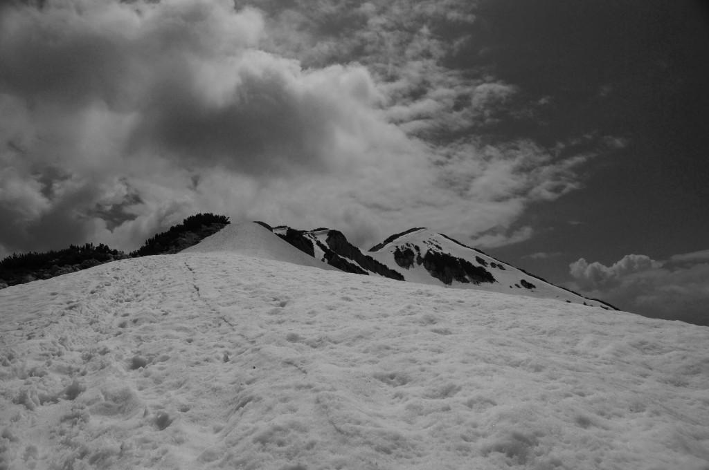 Schneefeld vor dem Vorgipfel