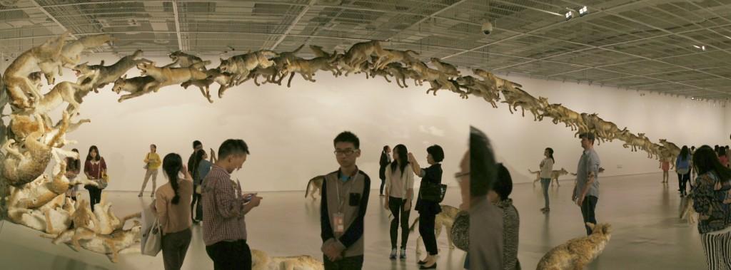 Head On: Installation mit Wölfen, die sich vergeblich abmühen, eine Glaswand zu überwinden