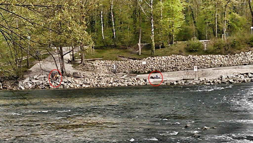 Blick vom gegenüberliegenden Ufer: Ein Sonnenanbeter hinter dem Zaun (rote Markierung rechts)