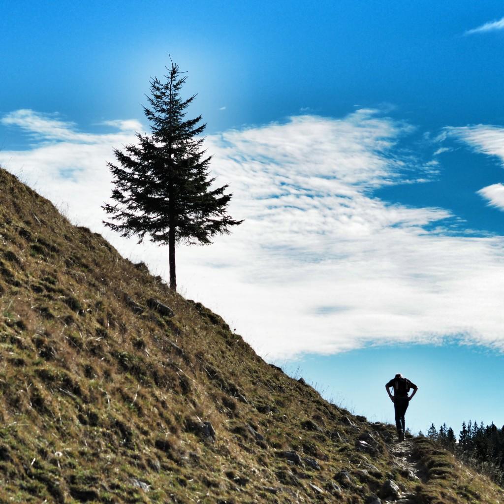 Immer in der Sonne: Aufstieg zum Taubenstein.