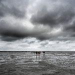 Baltrum Nordsee Ostfriesland Wattenmeer