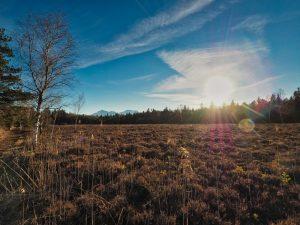 Schönramer Filz in Oberbayern Hochmoor mit Moorsee