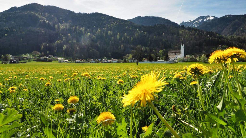 staudach-egerndach im Chiemgau